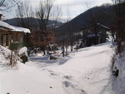 casa-giorgi-neve